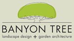 Banyon Tree Design
